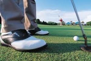 Sarasota Golfing